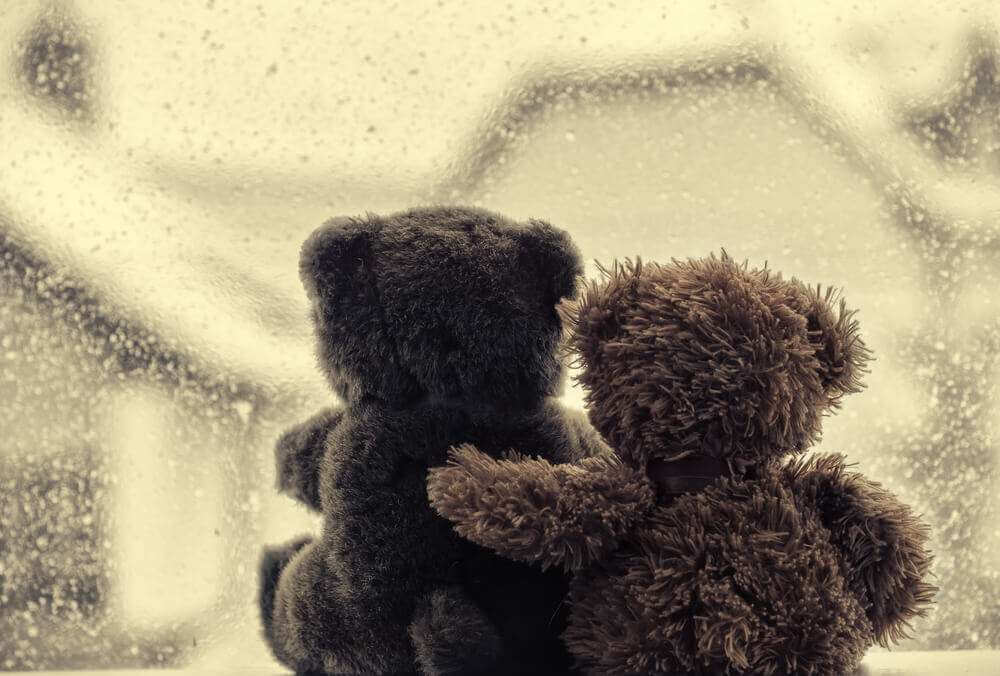 Bears in love's embrace, sitting in front of a window